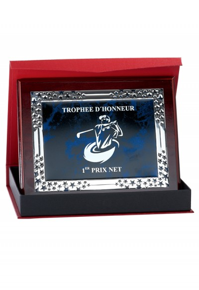 Plaque de Distinction Personnalisable - 189-21CLI